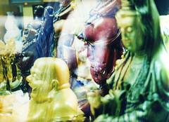 Ming and Buddha, 2006