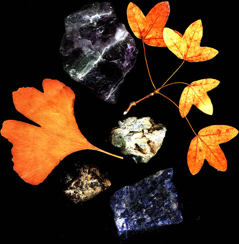 Minerals and leaves