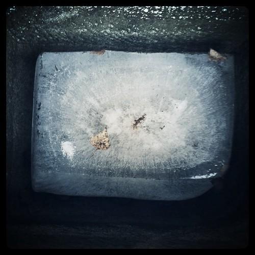 Ice block in the trough