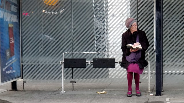 Purple Bus Stop Reader