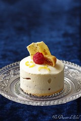 White and red entremets