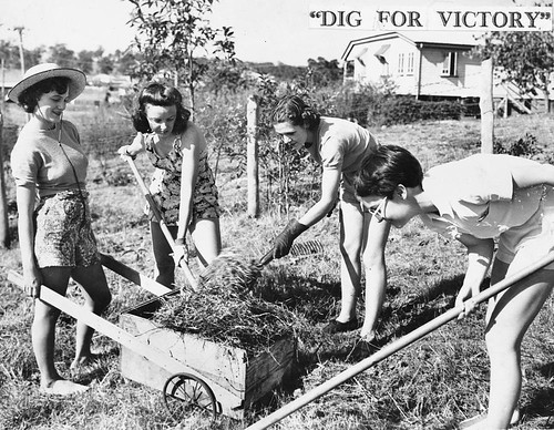 Digging for victory, 1941