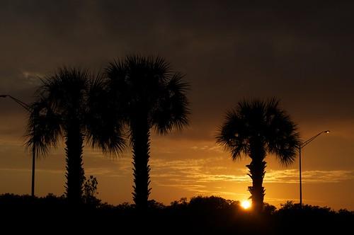 sunset sun afsdxvrzoomnikkor1855mmf3556g