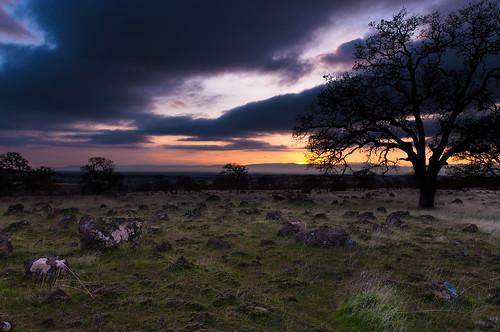 ca trees sunset field grass rock us oak boulders pasture norcal centralvalley redbluff rainbowsherbet nothdr ironcanyonloop