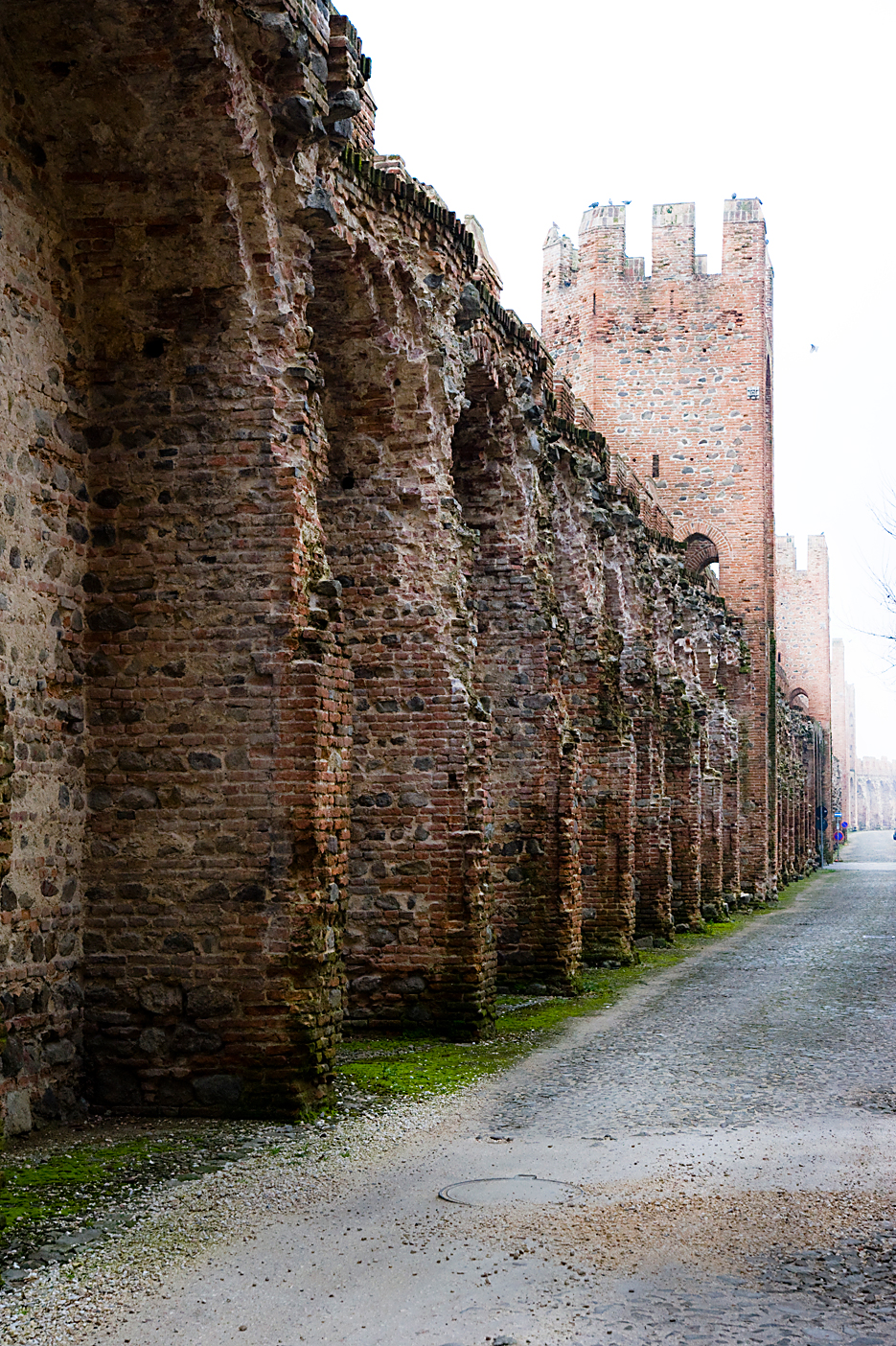 San Pietro Di Legnago Verona elevation of san pietro di legnago, via giuseppe randazzo, 2