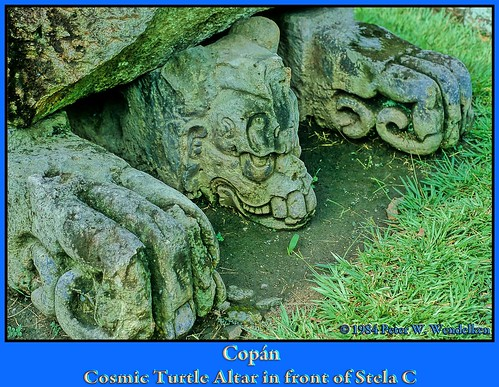 COPAN MAYAN RUINS: COSMIC TURTLE ALTAR in the GREAT PLAZA next to Stela C. 1984 Photo by Peter Wendelken.