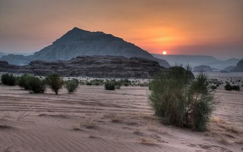 rock sunrise bush sand desert outdoor wadirum jordan hdr canonefs18553556is