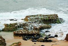 cape(0.0), bay(0.0), terrain(0.0), cove(0.0), islet(0.0), cliff(0.0), water(1.0), sea(1.0), tide pool(1.0), body of water(1.0), wind wave(1.0), wave(1.0), shore(1.0), coast(1.0), rock(1.0),