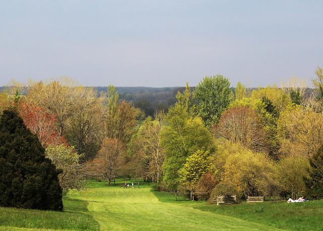 hilliers-landscape2
