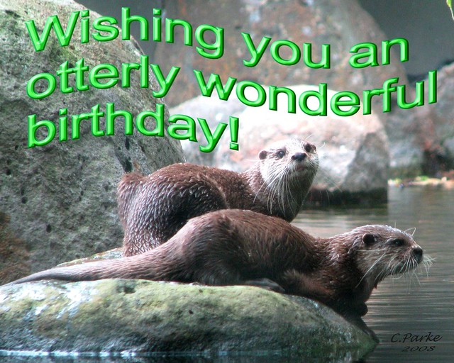 its your birthday meme funny