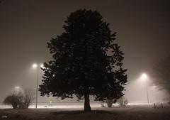 Le joggeur jaune dans le brouillard gris de la nuit noire