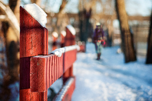 344/365: Happy Fence Friday {Red Fence ☼ Winter Hiker} Edition!