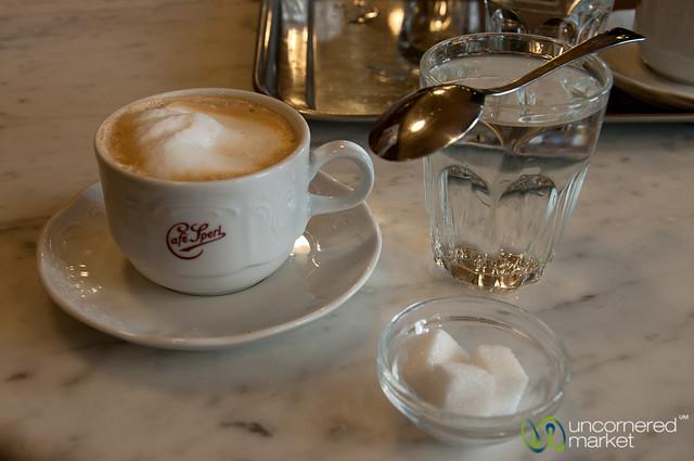 A Proper Viennese Coffee at Cafe Sperl - Vienna, Austria