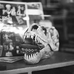 Dinosaurio comiendo tanquecito de lata
