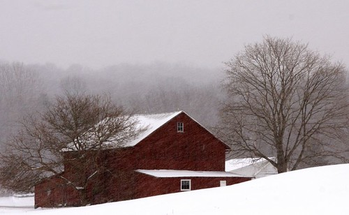 Red Barn In Snow Squall