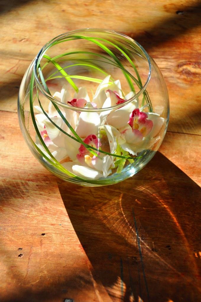Orchid Fish Bowl Centerpiece : Elegant orchid arrangement