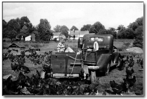 Feeding the chickens back in the days when the chickens had the run of the range (updated to include additional information.).