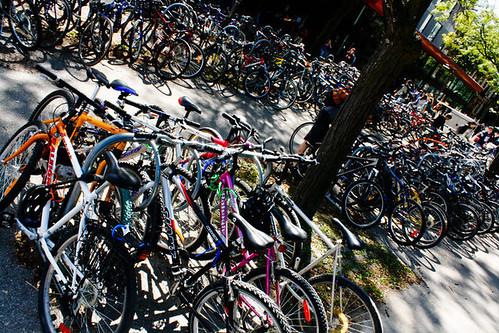 Bikes by Dogleash