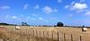 Hay field, New Zealand