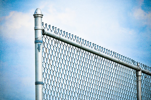 123:365 - fenced in