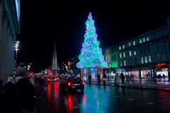 Dublin At Night - Christmas Tree On O