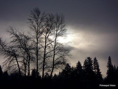 snow clouds sunrise scenerybcscenerybritishcolumbialowermainlandwhiterock
