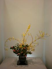 Japanese flower arrangement 31, Ikebana: いけばな