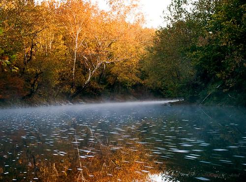 morning autumn fall water misty fog rural virginia colorful calm rivers serene streams leecounty powellriver jonesville backroadphotography kjerrellimages flanarybridge