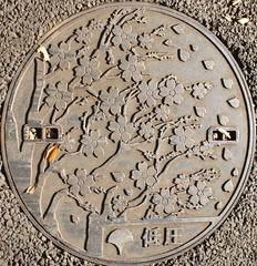 Japan2010-55-087