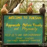 Yuksom Welcoming Committee - Sikkim
