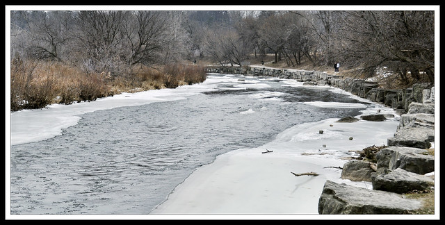 Walking on the trails at Erindale Park in Winter: the Credit River that runs through Mississauga
