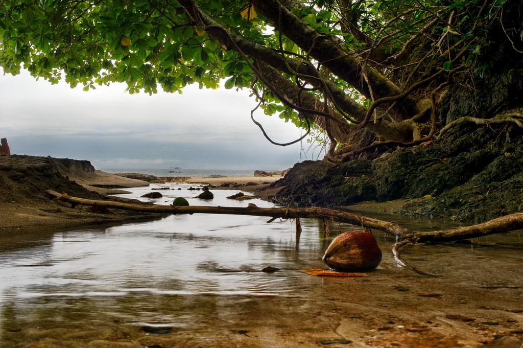 Imagen Costa Rica 5320571399 9F1F2190Ea B