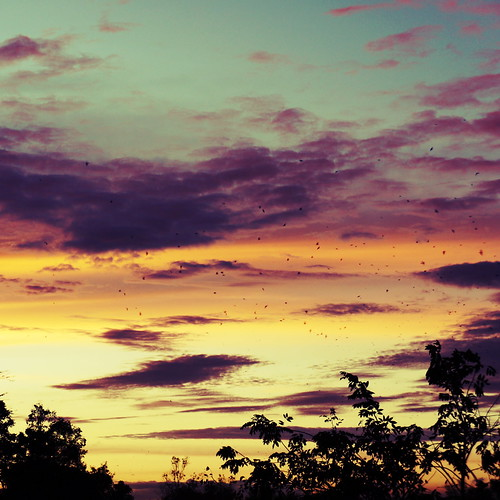 sunset sky clouds dusk philippines manila tropicalsunset