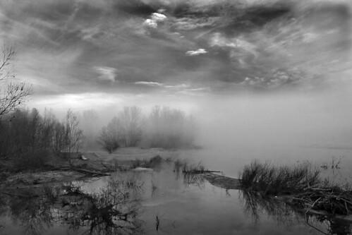 La nebbia crea un'atmosfera... by Claudio61 una foto ferma un ricordo nel tempo