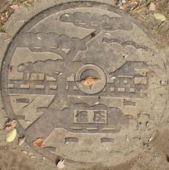 Japan2010-56-024