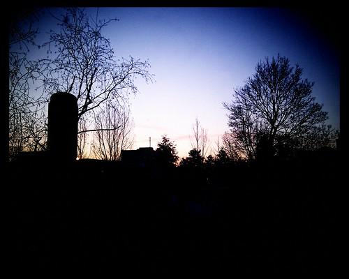 morning trees winter sun silhouette sunrise december ottawa westboro android htc earlswood sooc kitchissippi vignetteapp htcdesire