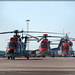 Aviation: World of Helicpoter's