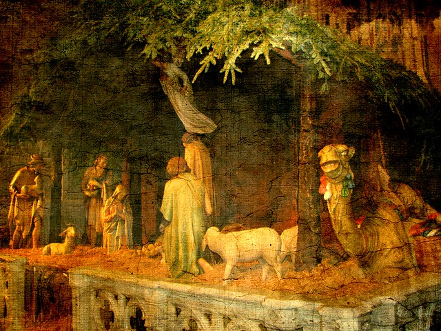 The Camel and the Nativity