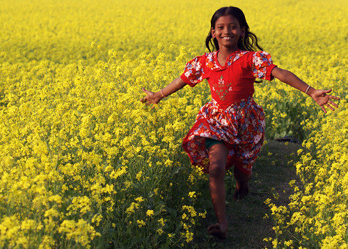 flowers light flower color green nature girl beautiful beauty smile field grass yellow female rural season children landscape golden living nice flora scenery asians looking natural farmers blossom outdoor path district background live farming harvest scenic lifestyle running run scene farmland palm explore human smiley attractive bloom mustard buds crops pollen persimmon lovely charming exquisite agriculture frontpage bangladesh magnificent goo cultivation attraction carrying delightful flourish bengali bengalis developing oilseed growers bangali bangladeshis pleasing districtexquisite seasonsmile