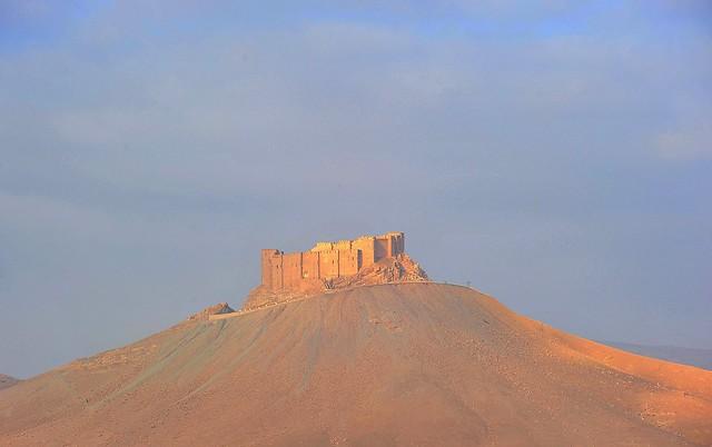 DSC_1819 Palmyra (Syria)