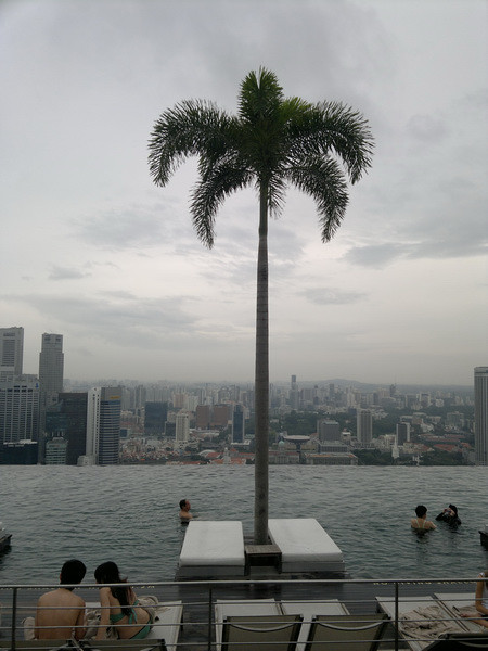 einer Palme kühlen Schatten im Singapur Marina Bay Sands 583