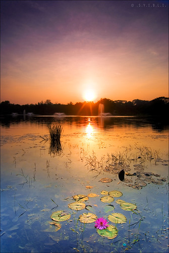Titiwangsa || The Sunrise color