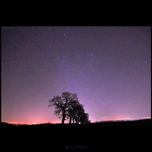 Montre moi ton étoile - 無料写真検索fotoq