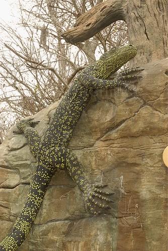 Flickriver Photoset 39 Central Florida Zoo And Botanical Gardens 39 By Hghjim