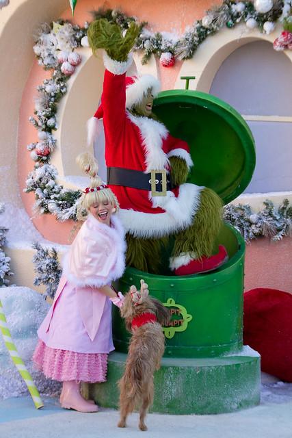 Christmas Decoration Costume