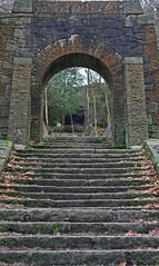 Steps and entrance