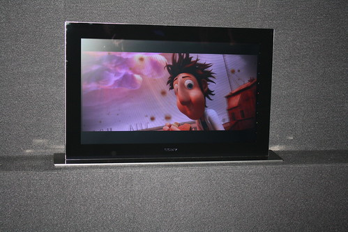 Sony 3D OLED Display CES-2011
