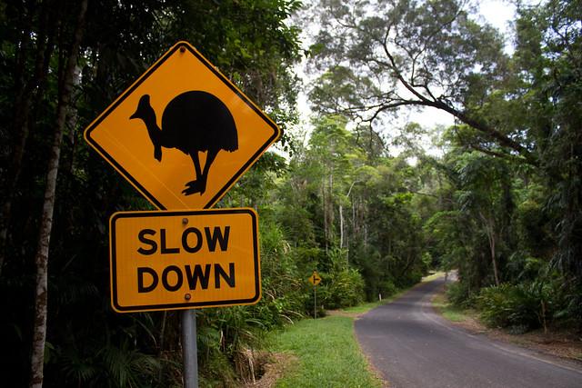 Australian Road Sign - Flickr CC Brian Gratwicke