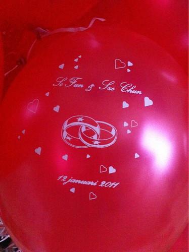Heliumballonnen Deelgemeente Hoogvliet Rotterdam