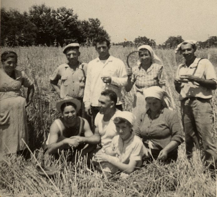 Our family in Calabria during the annual wheat harvest